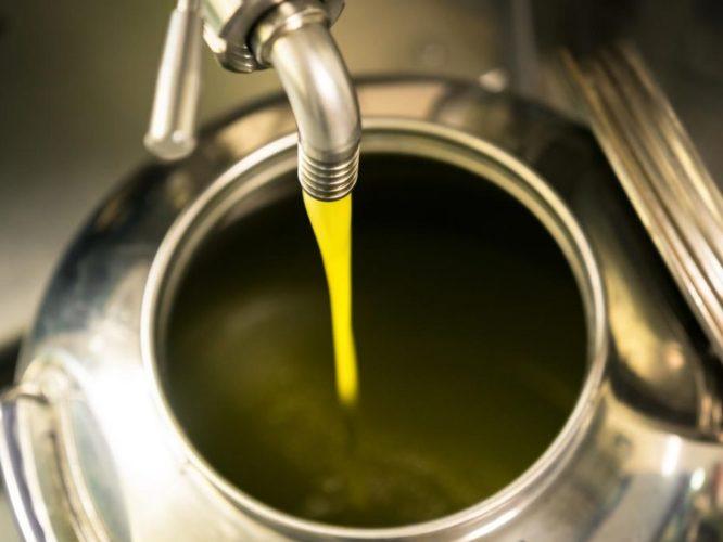 olio-di-oliva-marchigiano-produzione-propria